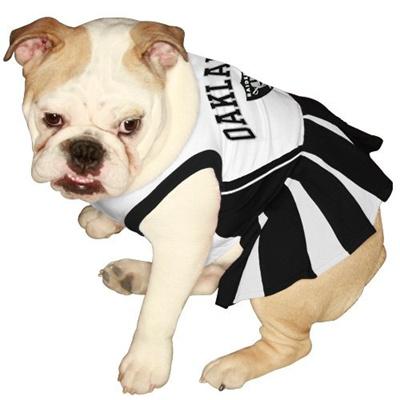 Qoo10 - Pets First NFL Oakland Raiders Dog Cheerleader Dress, X-Small   Pet  Care 37ae181e9