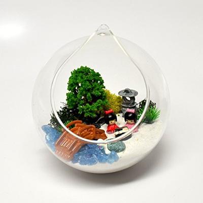 (Pixie Glare) Pixie Glare Hanging Glass Terrarium Japanese Garden Miniature  Kit DIY