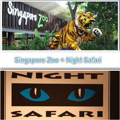 qoo10 promotional price singapore zoo with tram. Black Bedroom Furniture Sets. Home Design Ideas
