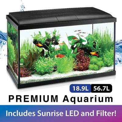 qoo10 premium fish tank pet care