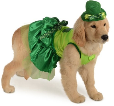 rubie s irish st patricks paddys day lucky girl dog pet costumes