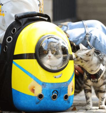 E Pet Bag Cat Out Carrying Cabin Backpack Shoulder Dog