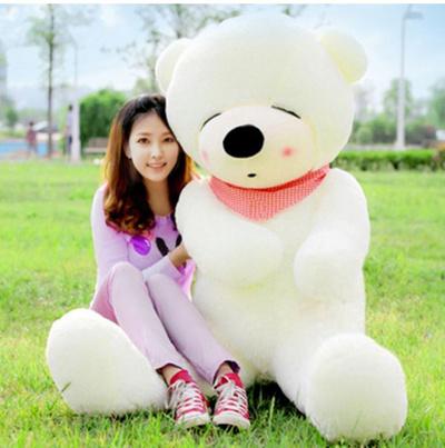 Qoo10 Teddy Bear Toys
