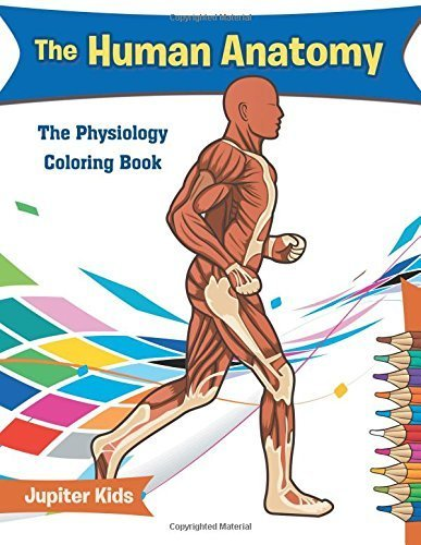 The Human Anatomy: The Physiology Coloring Book-