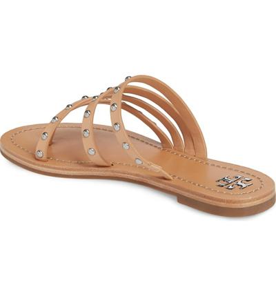 7f41ec8a7998 Qoo10 - Tory Burch Patos Studded Thong Sandal (Women)