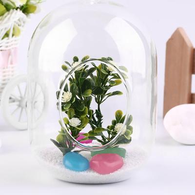 Qoo10 Transparent Glass Vase Hanging Terrarium Succulents Plant