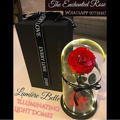 Valentine Day Gift For Her Enchanted Rose In Gl Dome Lasts Up To 5