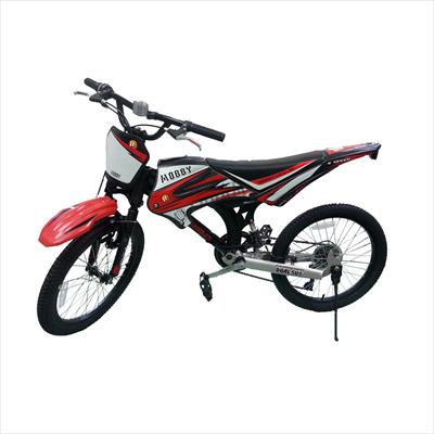 6aa640a2d55 Qoo10 - 20inch kids bike : Sports Equipment
