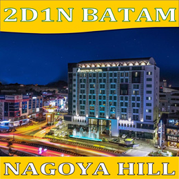2D/1N BATAM NAGOYA HILL PACKAGE TOUR(FERRY+TRANSFERS+HOTEL W/BREAKFAST+TOUR WITH LUNCH AND MASSAGE)