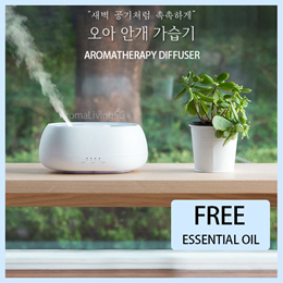 Adjustable Mist Mode Waterless Auto Shut-Off Various Places Like Bedroom,Office,Car ZJX1111 Air Humidifier Micro LED Landscape Blue