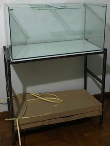 3 x 1.5 x 1.5 FEET GLASS TANK + WROUGHT IRON STAND (ADD-ON DOPHIN CANISTER FILTER / GUPPY COVER)