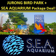 Jurong Bird Park + SEA Aquarium Package Deal [Ideal Gifts! Singapore Attractions Tickets!]