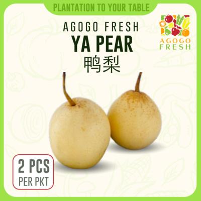 47 Ya Pear 鸭梨 (2pcs)