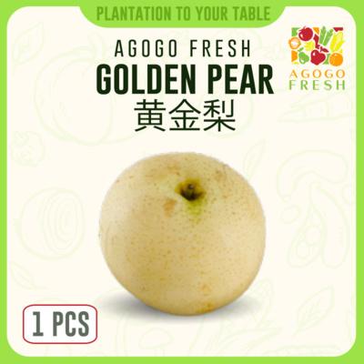 48 Golden Pear 黄金梨 (1pcs)