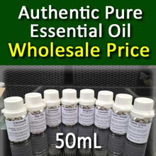 Wholesale Pure Essential Oils (50mL) for Aromatherapy (Lavender Citronella Lemon Grass Eucalyptus..)