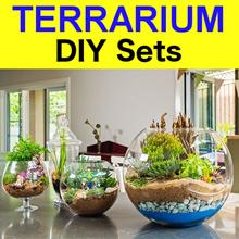 Terrarium DIY Set ✤ Terrarium Educational Set ✤ DIY Potted Gift ✤ Terrarium Kit ✤ DIY Kit ✤