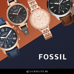 Fossil Men and Women Series FS and ES