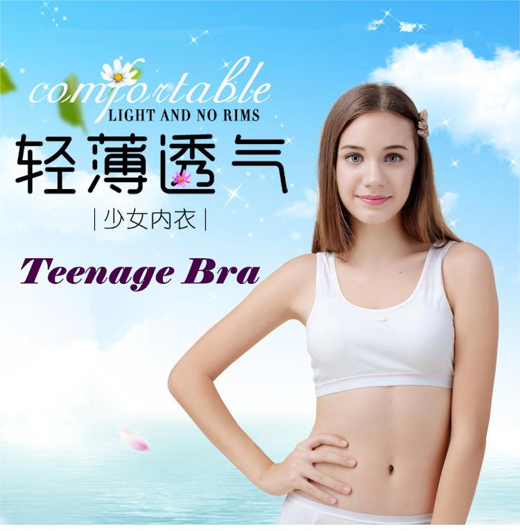 2431ef1acd929 Qoo10 - Teenage Bra   Underwear   Socks