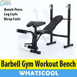 Barbell Gym Workout Bench Multi-Purpose Barbell Abs Training Ab Rollers Pull Spring Dumbbell Weights