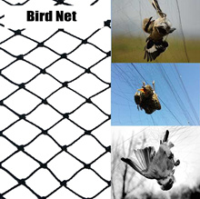 Bird Netting 50 X 50 Net For Bird Poultry Aviary Game Pens Protection Nets