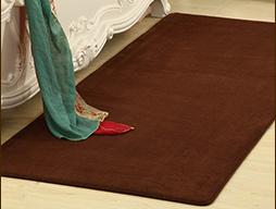 Coral Fleece Carpet