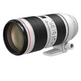 948bbbd5837 lens Search Results   (Q·Ranking): Items now on sale at qoo10.sg