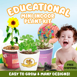 [Ready Stock!] ❤IMP❤Educational Kit DIY Mini Indoor Plant for Home and Office Deco Green Life