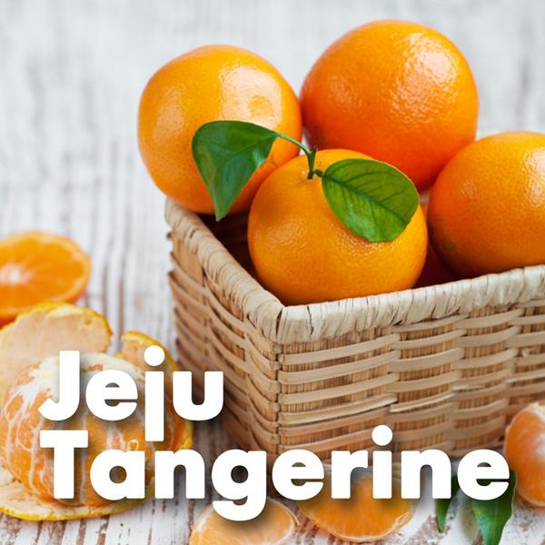 5KG Jeju Tangerine [Genuine Korean Import]