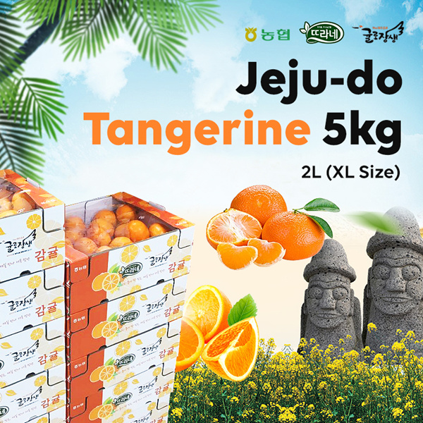 [Korea Jeju-do]?Tangerine 1Box 5kg?fruit with a high sugar content/jeju mandarins/Made in Korea Deals for only S$46.9 instead of S$0