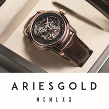 [ARIES GOLD] Automatic Male Watches | FREE Watch Winder | Premium Quality | Genuine Leather