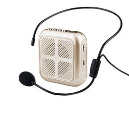 Moov 2.4G Portable head-wearing bee wireless microphone microphone Teacher trainer Training Guide Mi