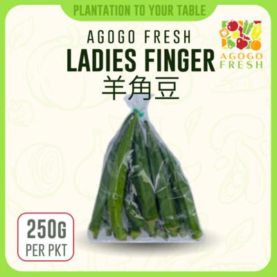 41 Ladies Finger 羊角豆 (250g)