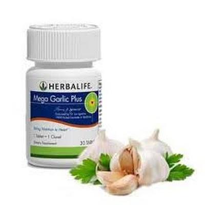 mega garlic fiber