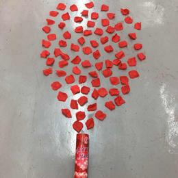 30cm Party Popper Red Flower Petals