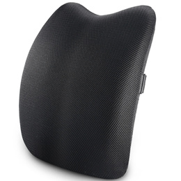 Lumbar Support Back CushionBack Pillow for Office Chair and Car SeatErgonomic Pillow Memory