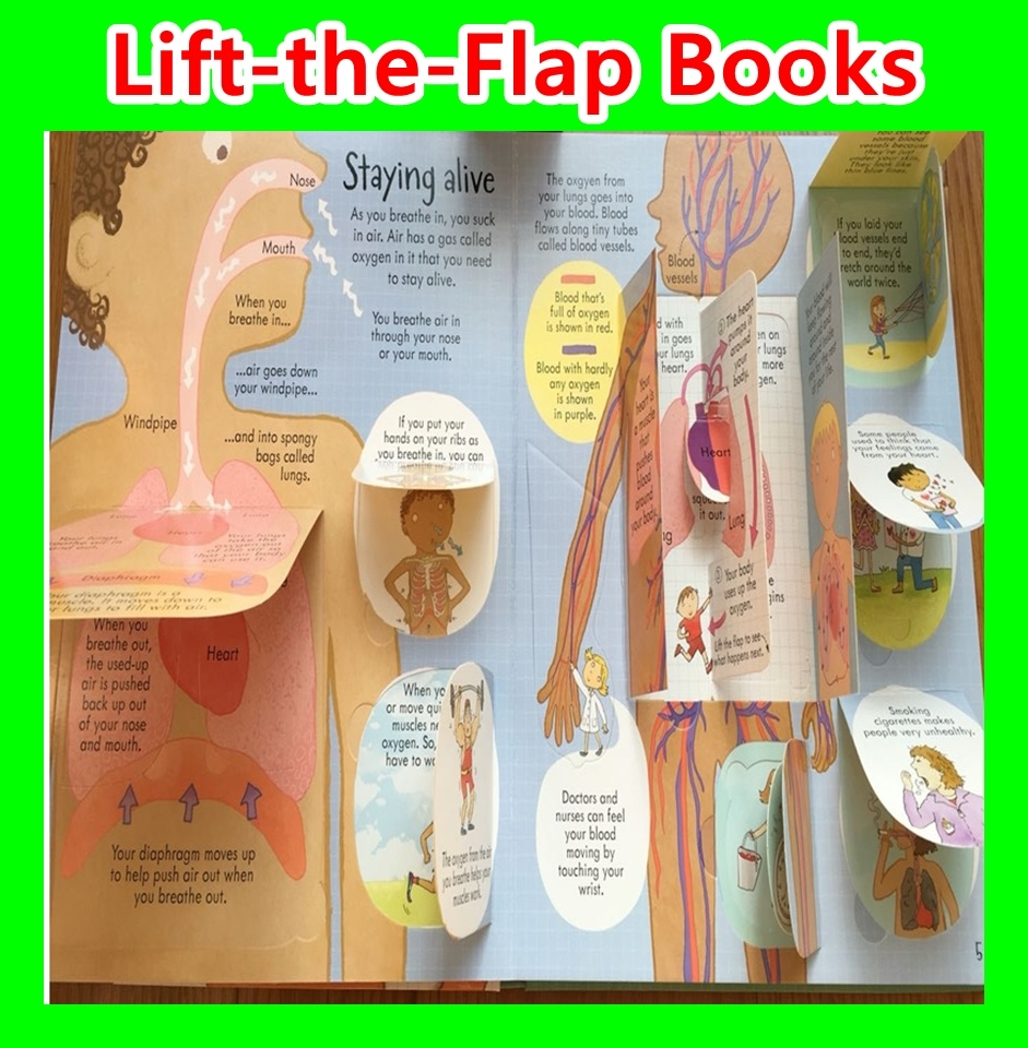 SALESRESTOCKUSBORNE Look InsideSee InsideHardcover Lift Flap BookChildren BookEducational