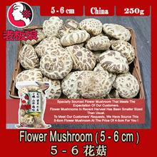 Japan Flower Mushroom (5-6cm) 250g ! Big With Nice Flower Patterns !