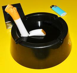F.e.s.s Indoor Melamine 2 Cigar Rest Ashtray for Patio Outdoor Desktop Use