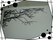 Tree wall stickers home decor House Decoration