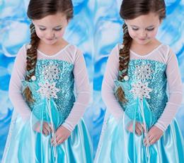 Frozen Princess Dress Full Custume Set Girl Gown