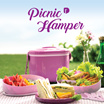 Picnic hamper set ( hamper 1 + Plate 4 + Spoon and Fork 4)