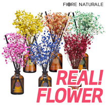 Fiorena Real Flower Diffuser★Made in KOREA★Preserved Diffuser/Home Interior/Flower scent/Refill