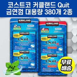 코스트코 커클랜드 Quit 금연껌 니코틴 금연보조 대용량 380개 2종