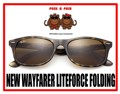 7e5bdd64e29  RB4223  RB New Way.farer Liteforce Folding Sunglasses