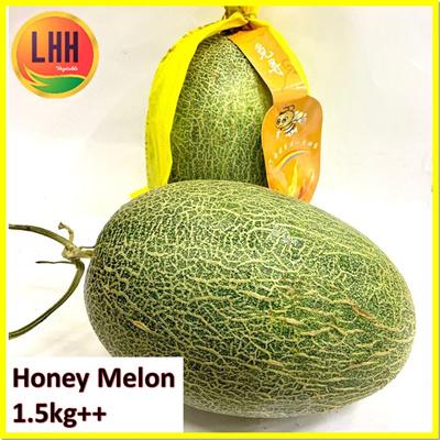 Hami Melon ?????