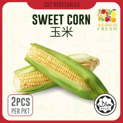 D40 Corn 玉米 X2