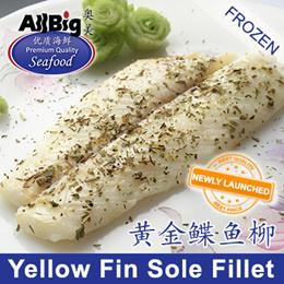 Yellow Fin Sole Fillet(500G)(Frozen)