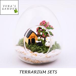 Terrarium sethome decordiyartcraftgardeninggiftssoil diy terrarium package terrarium sets terrarium succulent house warming gifts negle Choice Image