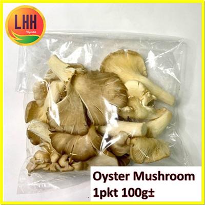 Oyster Mushroom ??