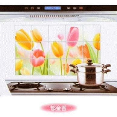 Stiker / Wallpaper Dinding Dapur Anti-Minyak Motif Bunga Tulip Panjang Stickers / Wallpaper Wall